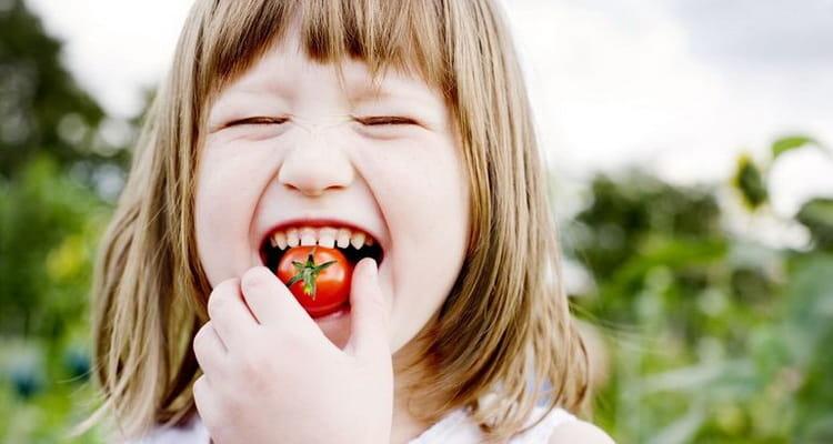 сонник ем помидоры