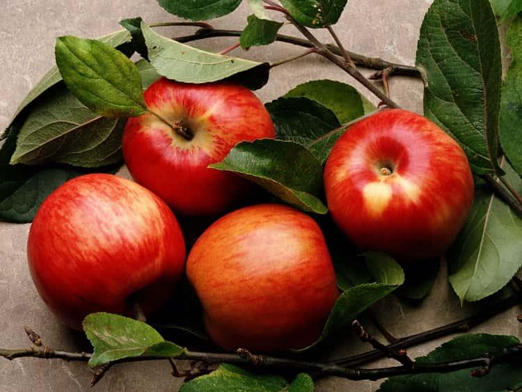 К чему снятся яблоки: сонник