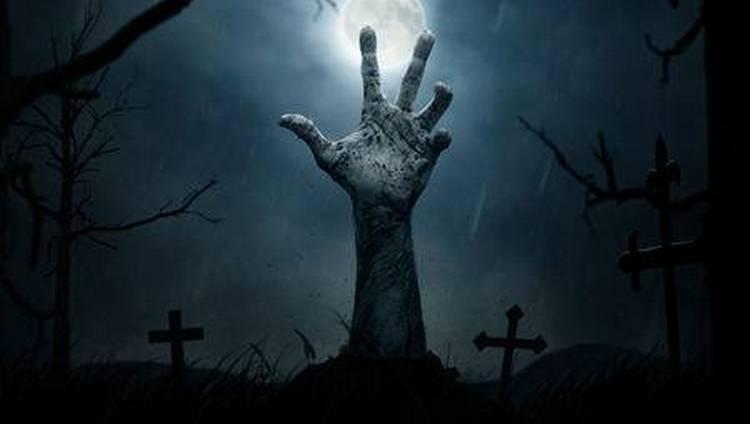 Узнайте, к чему снится зомби-апокалипсис.