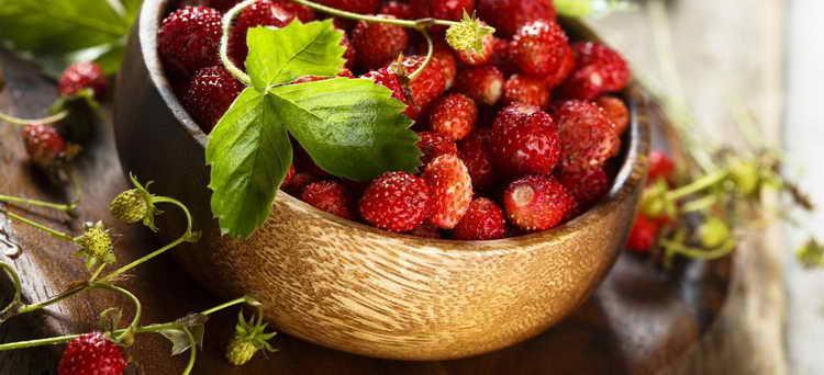 диета при обострении гастродуоденита с повышенной кислотностью