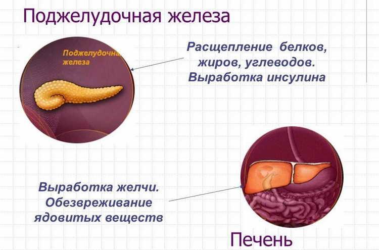 диета для восстановления печени