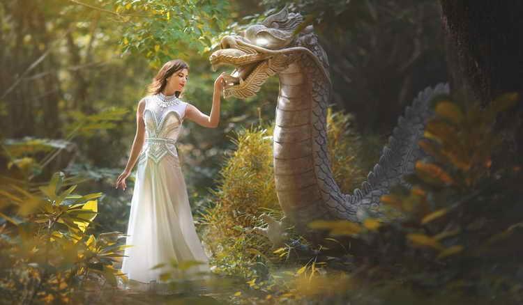 к чему снится дракон по фрейду