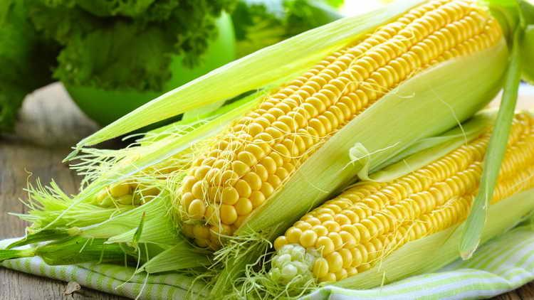 видеть во сне кукурузу