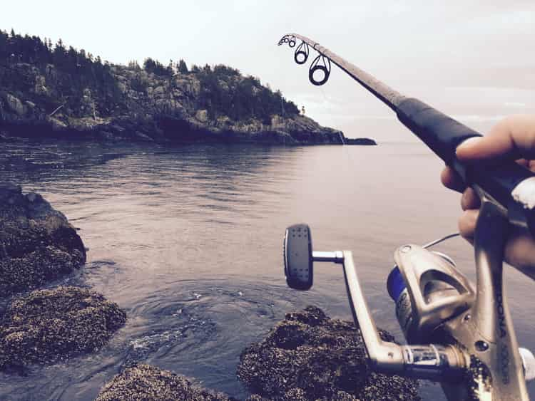 к чему снится рыбалка женщине