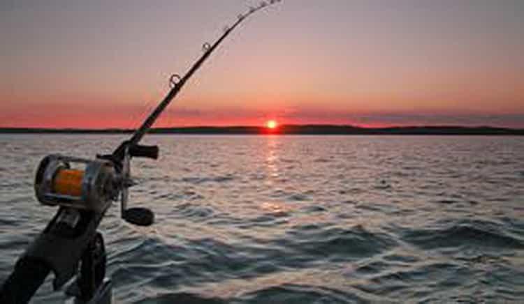 к чему снится рыбалка и пойманная рыба