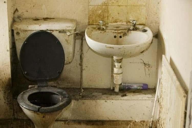 Туалет - неприятности, упасть в него - получить деньги, золото, как сообщает сонник - предсказатель.