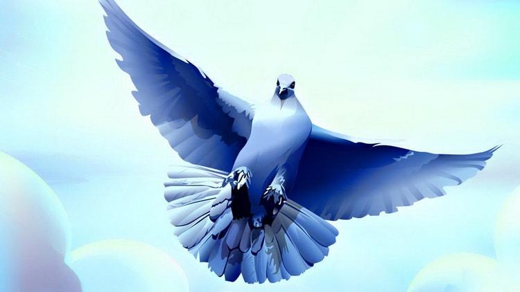 к чему снятся голуби во сне