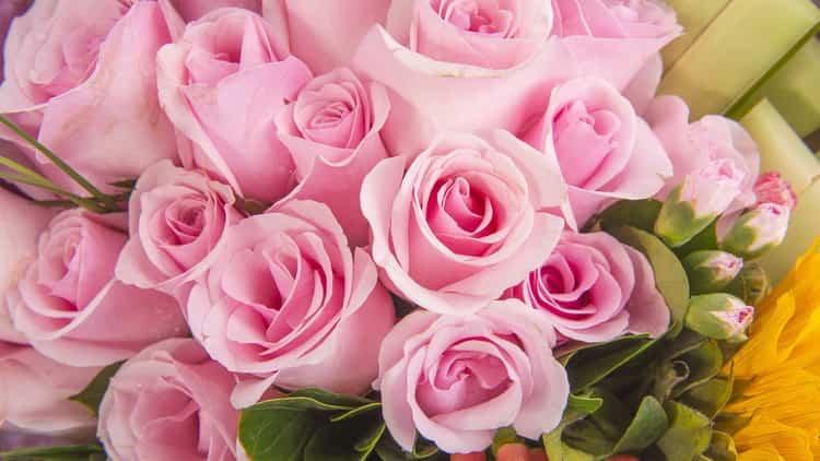 приснились розы