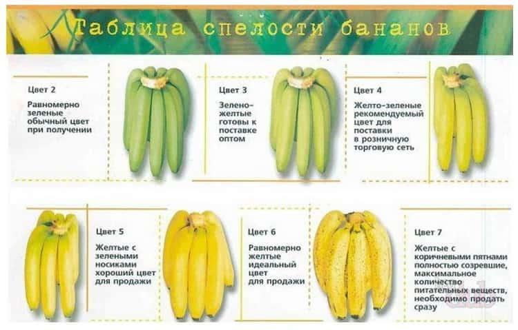 Как правильно выбрать банан