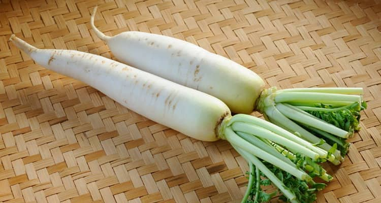 польза и вред овоща дайкона
