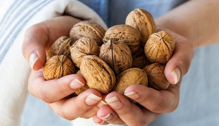 Узнайте все о пользе и вреде грецких орехов для организма.