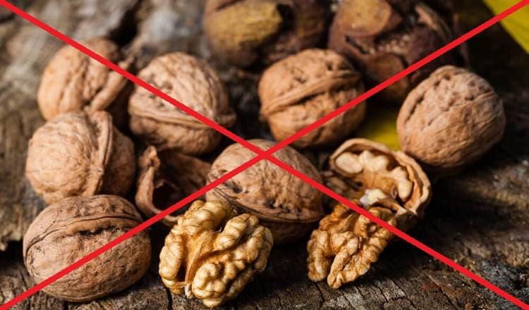 Есть также ряд случаев, когда есть грецкие орехи просто нельзя.