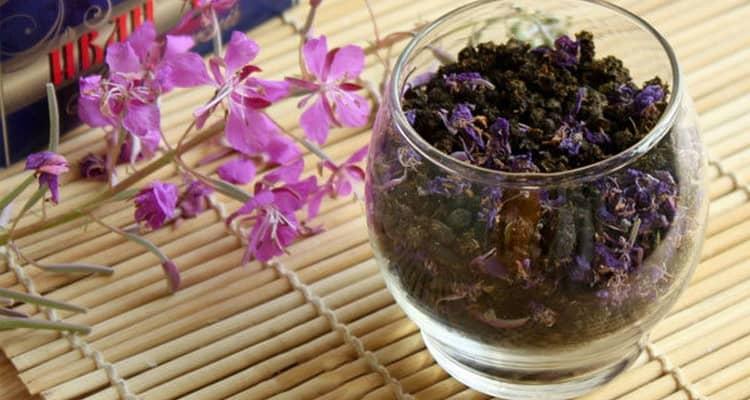 Польза иван чая для организма мужчины