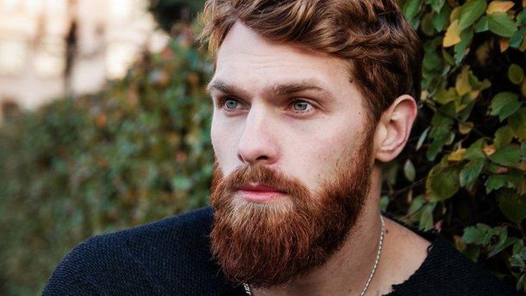 Сонник поможет понять, к чему снится мужчина с бородой.