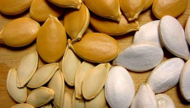 Пользу приносят и семена кабачков.