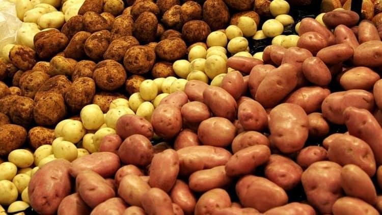 При выборе овоща обращайте внимание на то, чтобы он не был мягким, зеленым или сморщившимся.