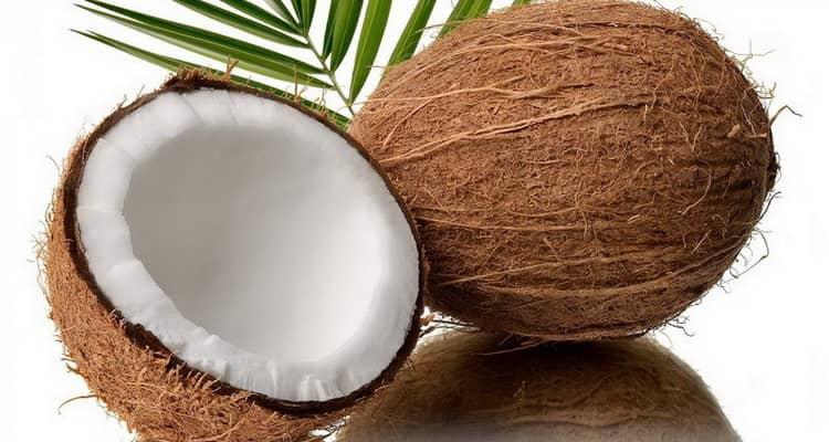 кокос польза и вред для здоровья
