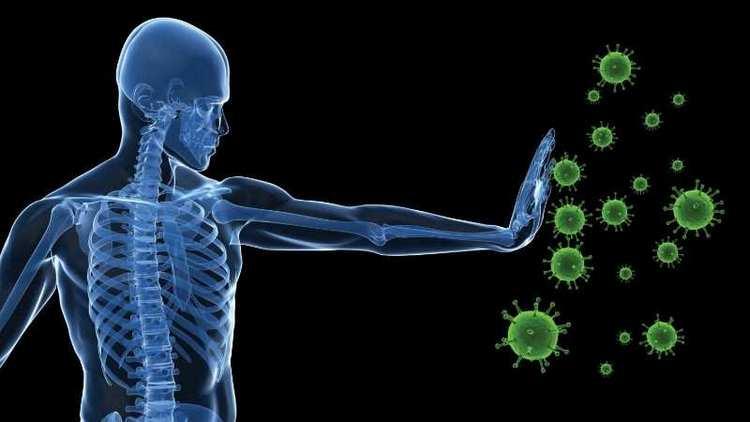 Этот продукт помогает бороться организму с вирусами.