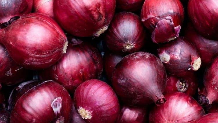 При выборе лука обращайте внимание на то, чтобы луковицы были упругими, не мягкими.