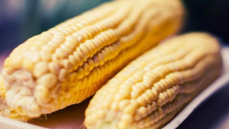 Поговорим о пользе кукурузы для организма человека.