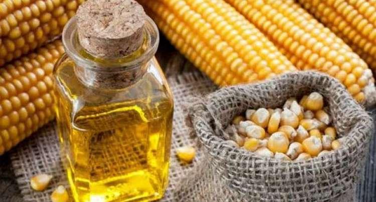 нужно знать, как принимать кукурузное масло, чтобы извлечь из него пользу, а не вред.