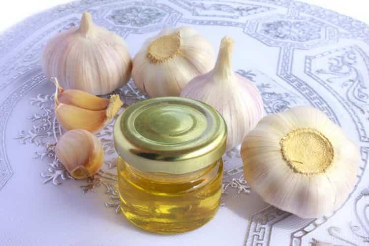 Мед с чесноком: польза и вред для организма