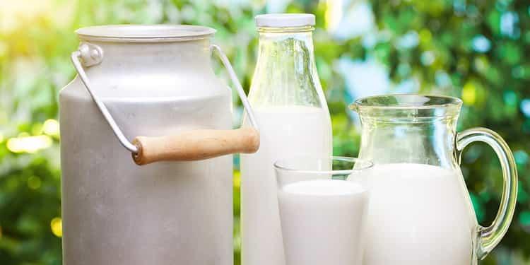 молоко на ночь польза и вред
