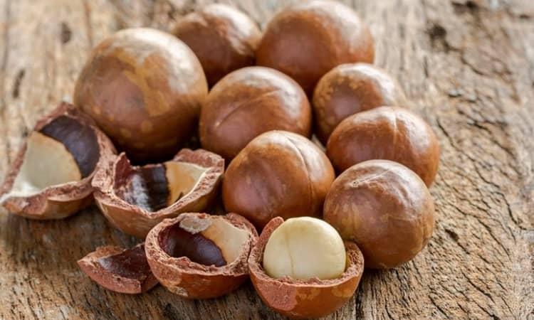 Орешки макадамия польза для организма человека