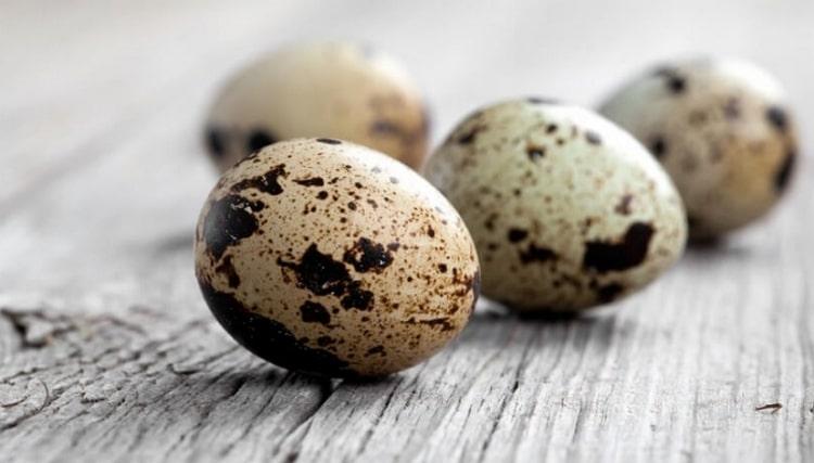 Польза перепелиных яиц для организма человека несомненна.