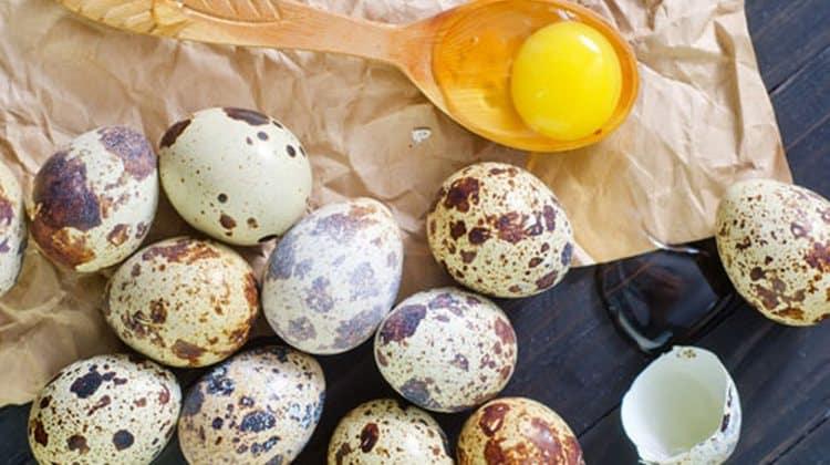 Поговорим о пользе и вреде перепелиных яиц и о том, как их правильно принимать в пищу.