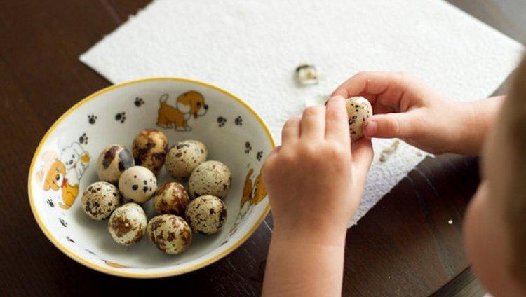 Просто огромна польза перепелиных яиц для детей.