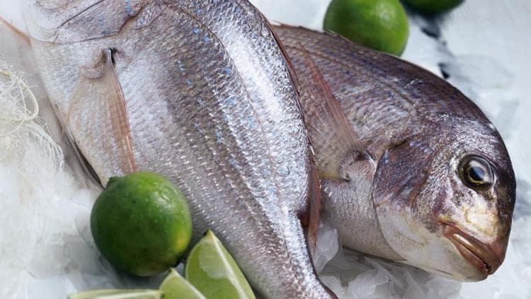 на фото видна рыба тилапия или телапия, о пользе и вреде которой мы и поговорим сегодня.