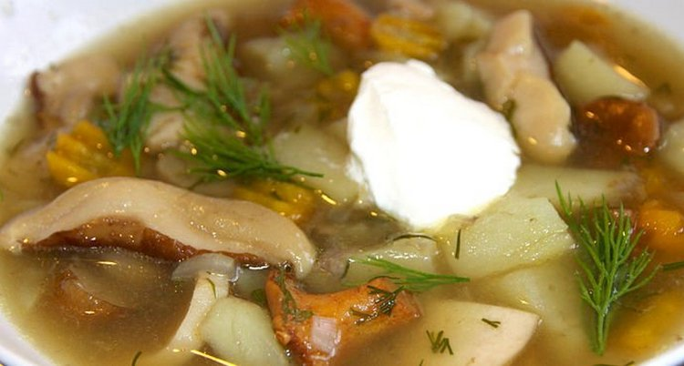 Вкусным получается и суп с вешенками.