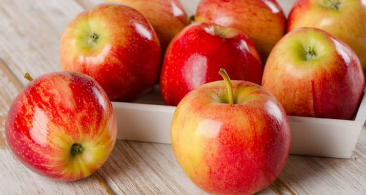 Сушеные яблоки их польза и вред для здоровья