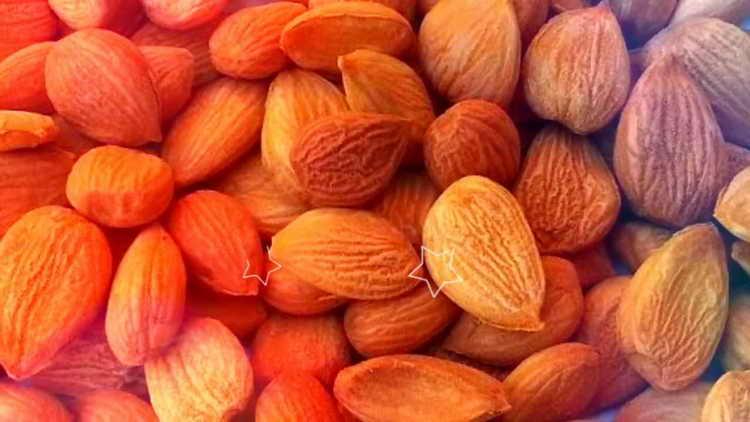 абрикосовые косточки отзывы о пользе