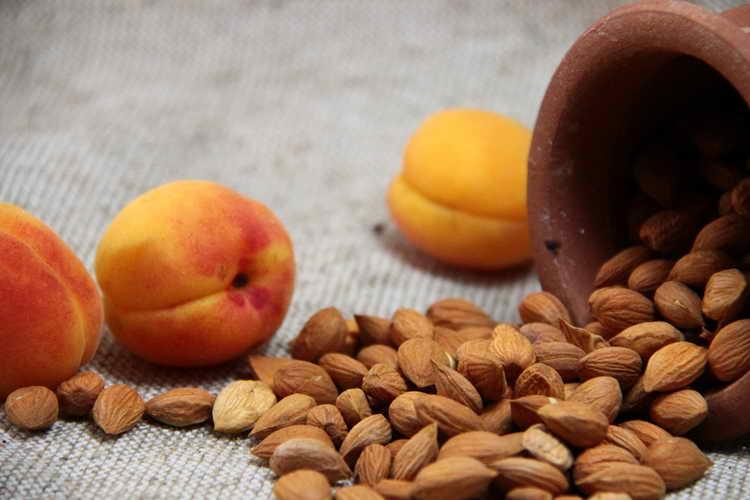 Правильное хранение абрикосовых косточек