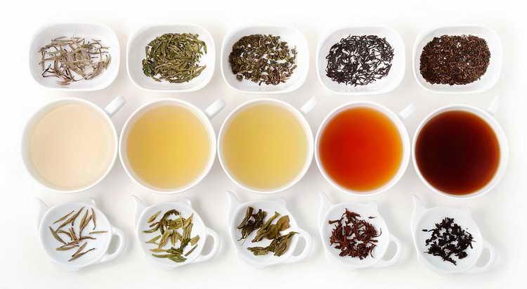 зеленый чай с молоком польза и вред