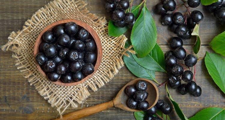 Отзыв о черноплодной рябине