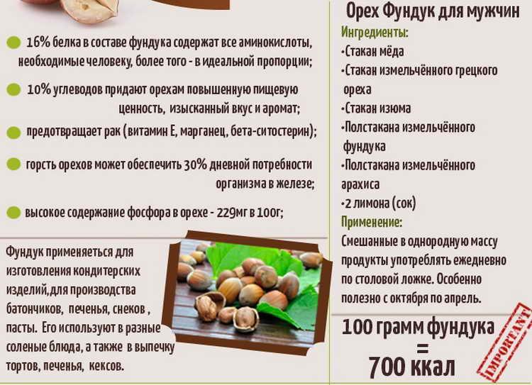 фундук орехи польза и вред