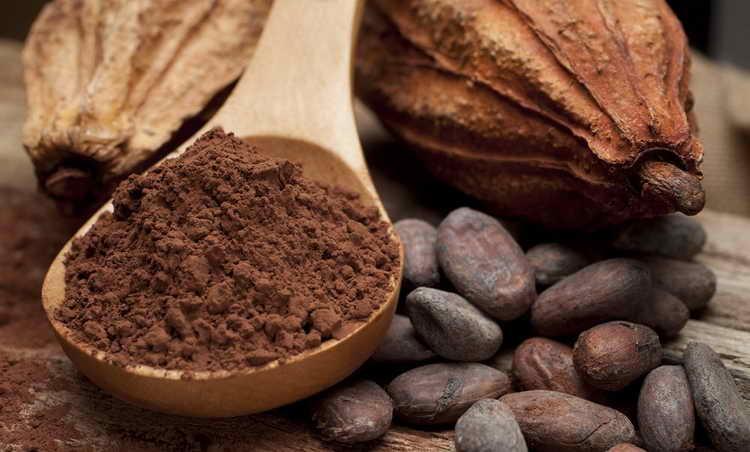 какао порошок польза и вред для здоровья
