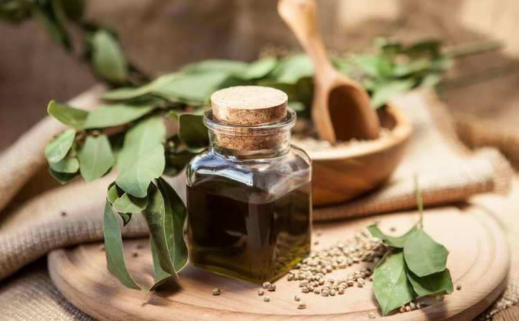 конопляное масло польза и вред как принимать