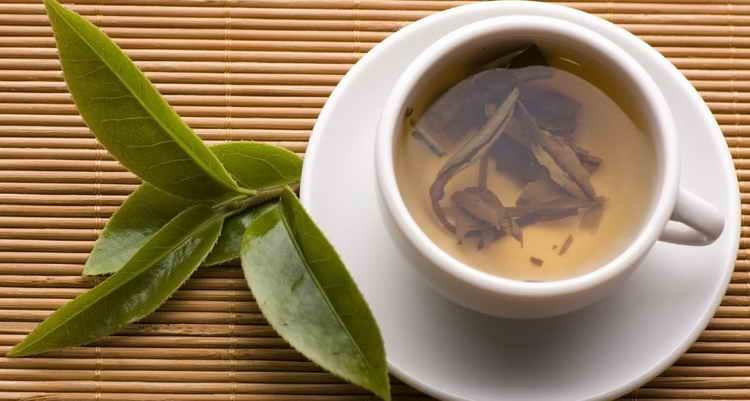 чай из лаврового листа польза