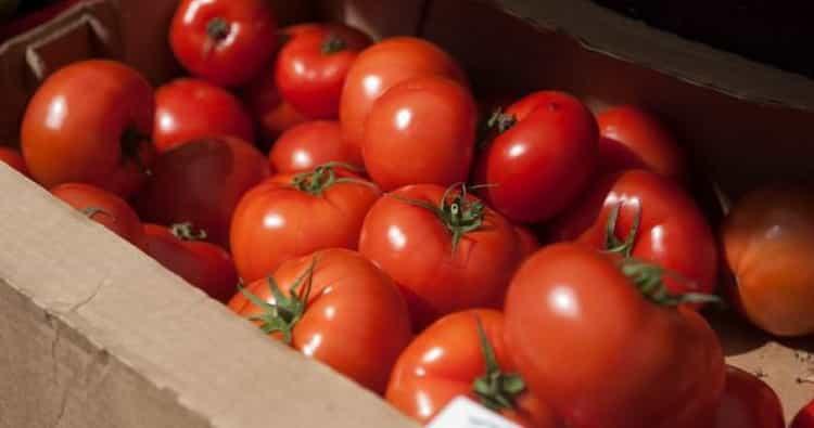 зеленые помидоры польза и вред