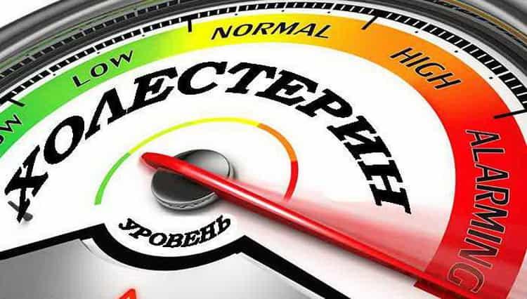 Стевия: свойства, польза и вред