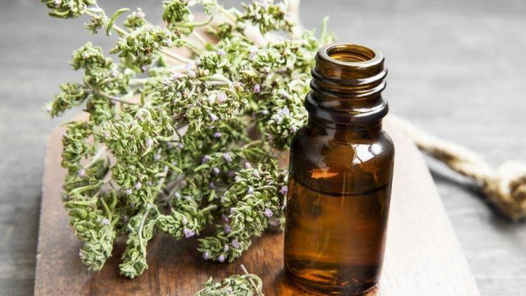 Пользу приносит не только трава чабрец, но и ее масло.