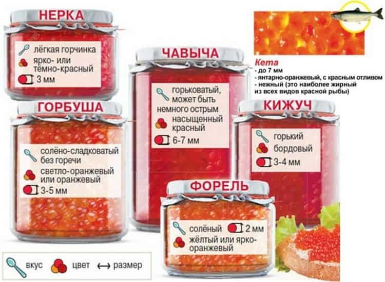 Все о калорийности красной икры