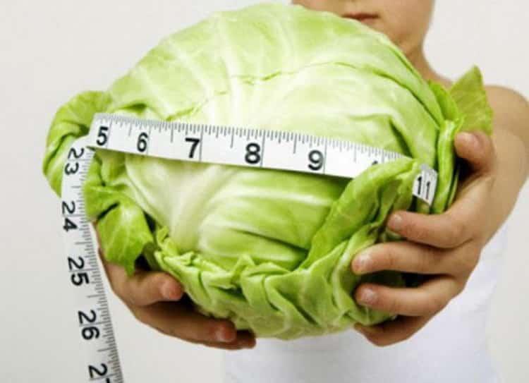 Какая калорийность капусты