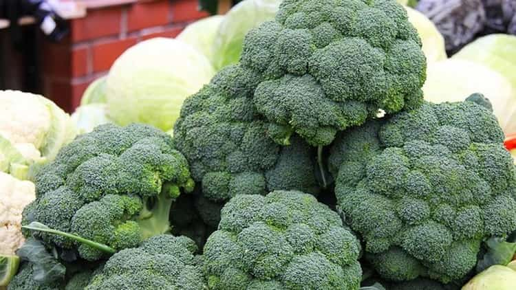 сколько калорий в брокколи на пару