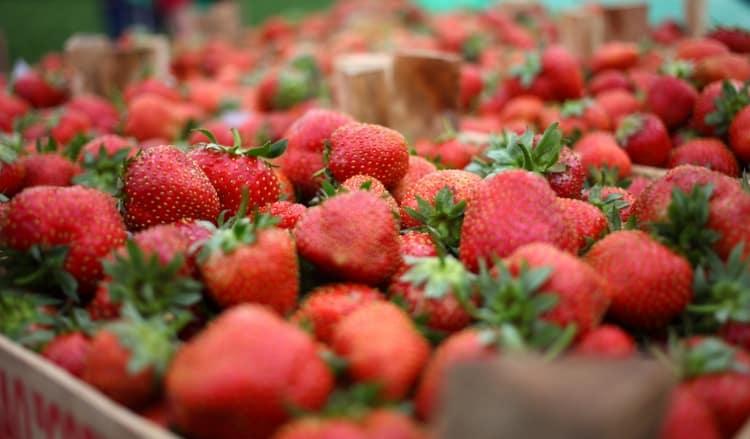 Калорийность клубники на 100 г порадует любителей ягод и фруктов.