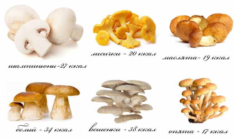 калорийность жареных грибов
